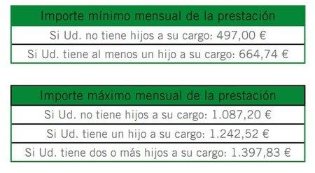 paro-minimo-y-maximo-para-el-2011.jpg