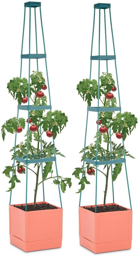 Macetero para tomates