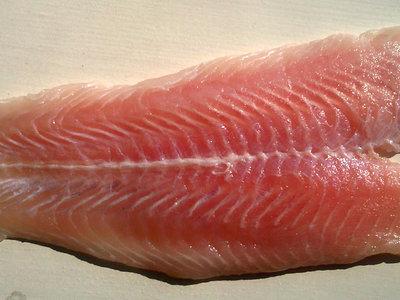 Todo lo que hay que saber sobre la panga, el pescado que Carrefour se niega a comercializar