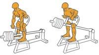 Guía para principiantes (LIII): Remo en barra T