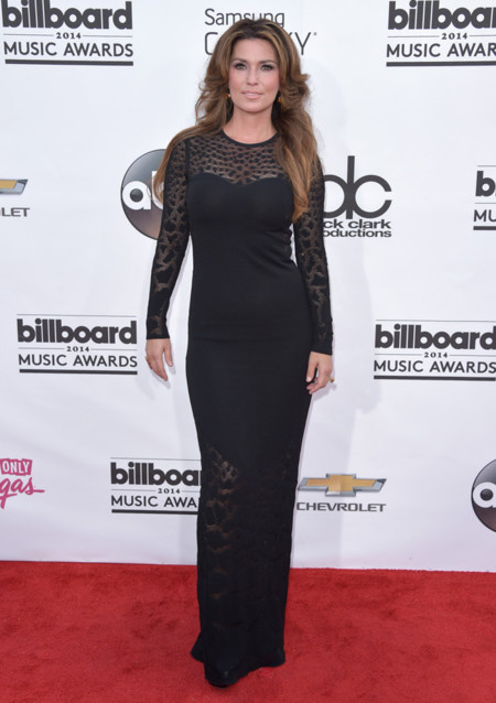 Shania Twain Billboard 2014 mejor vestidas