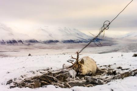 David Wrangborg De Troms Norge