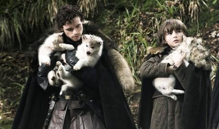 Lobos Stark Todo Lo Que Sabemos Sobre Juego De Tronos Y Su Ultima Temporada