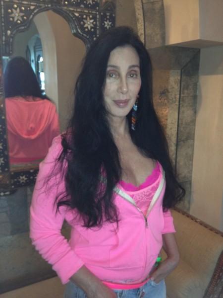 P!nk y Timbaland también se suben al carro de Cher