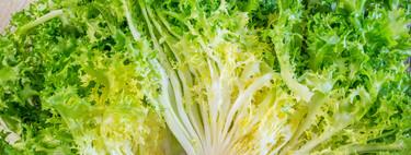 Cinco recetas originales con escarola, la reina de las ensaladas de invierno que está en plena temporada
