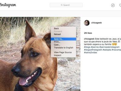 Descarga las fotos de Instagram a gran resolución en tu navegador con estos trucos