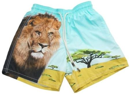 vilebrequin_lion_safari_1.jpg