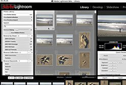 Adobe Lightroom Beta 3 para Windows