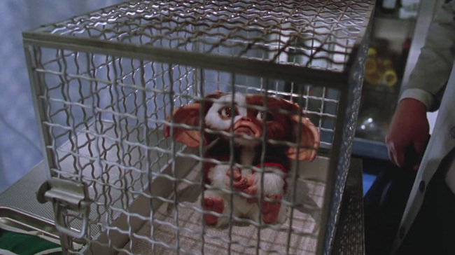 Gizmo entre rejas en 'Gremlins 2'