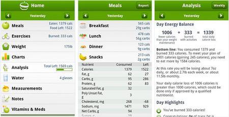blackberry información nutricional diabetes