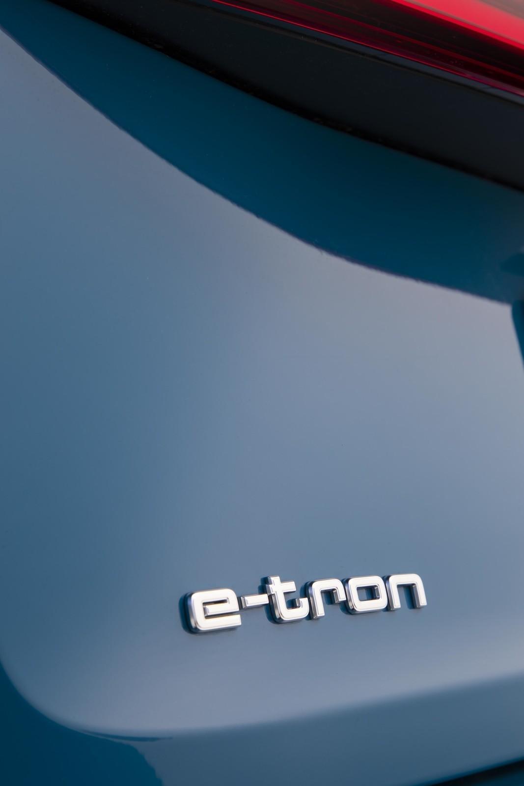 Foto de Audi e-tron (60/111)