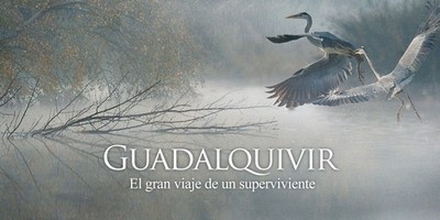 [Vídeo] La vida que guarda el Guadalquivir contada en un documental