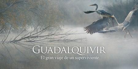 [Vídeo] La vida que guarda el Guadalquivir contada en un documental
