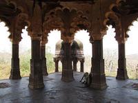 Ranthambore, historia y naturaleza salvaje en India