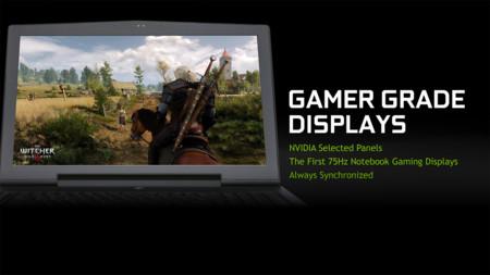 Nvidia Gync 75hz Panel
