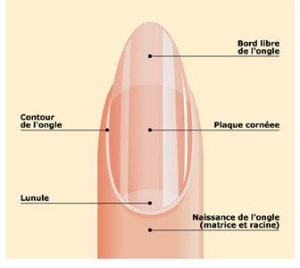 Especial manicura: qué son las cutículas y cómo cuidarlas