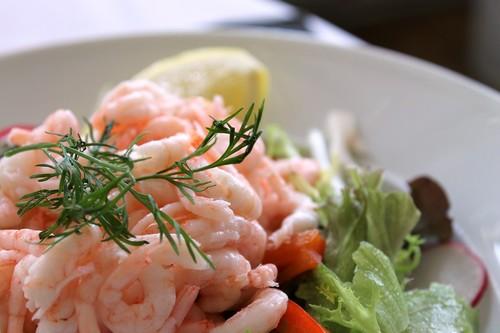 Cinco recetas veraniegas ricas en proteínas