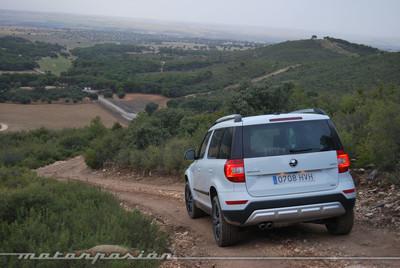 Škoda Yeti 2013, toma de contacto