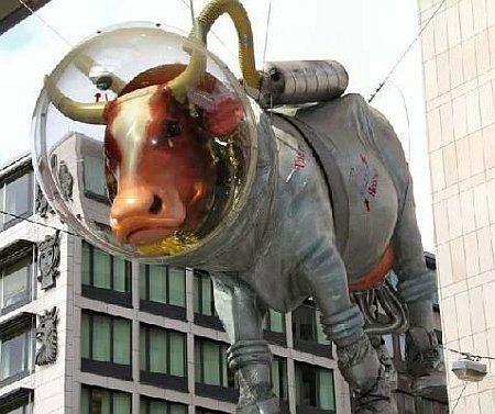 Vaca de Estocolmo