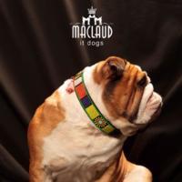 Los collares más fashion para perros los tiene Maclaud it dogs