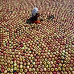 Foto 9 de 16 de la galería reuters-2007 en Xataka Foto