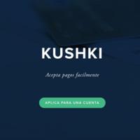 Kushki, la nueva pasarela de pagos en línea que llega a Colombia