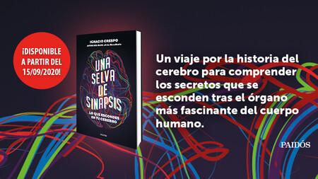 Libros que nos inspiran: 'Una selva de sinapsis' de Ignacio Crespo