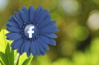 Si no puedes con el enemigo... Facebook prepara una aplicación para chatear anónimamente