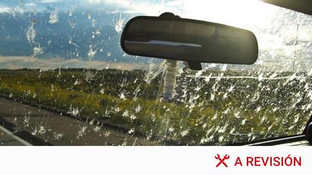 Cómo limpiar los mosquitos del coche