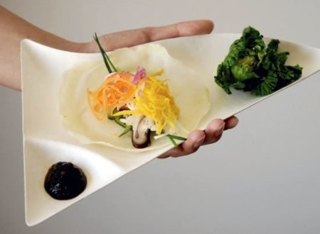 Wasara, una línea de vajilla biodegradable