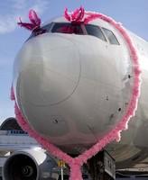 El vuelo rosa