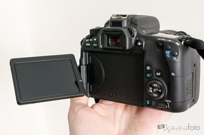 Canon77d 06640