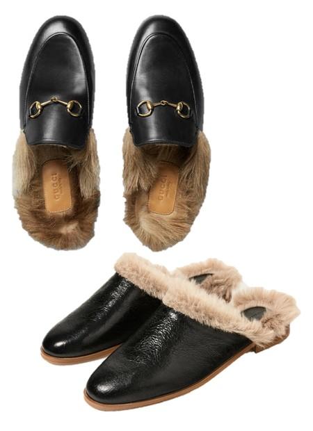 Gucci Zara Clon