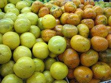 Comprar naranjas de Valencia en Internet