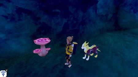 Pokémon Espada y Escudo: cómo conseguir Maxisetas en la expansión Isla de la Armadura