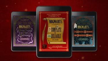 No hace falta ser mago para hacer este sueño realidad: J.K.Rowling confirma tres libros más de Harry Potter