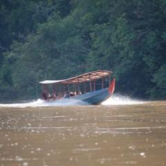 Foto 41 de 77 de la galería visitando-malasia-5o-y-6o-dias en Diario del Viajero