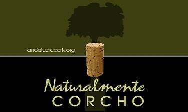 1er Concurso de figuras con tapones de Corcho 2008