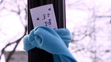 La preciosa razón por la que podrías ver bufandas colgando de los árboles este invierno
