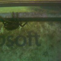 En vivo, mira los peces nadar alrededor del gigantesco centro de datos submarino de Microsoft con 864 servidores