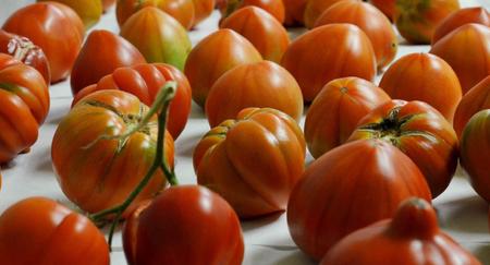 Descubren Como Devolverle Al Tomate Su Verdadero Sabor Image 380
