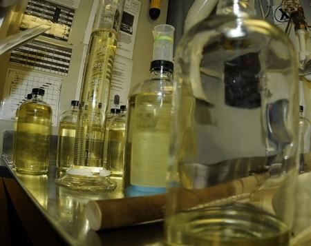 Excrementos humanos crudos convertidos en biocombustible