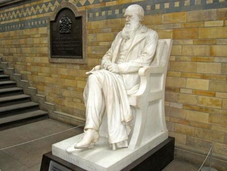 Charles Darwin Museo Historia Natural Londres