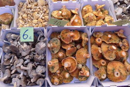 Setas Mercado