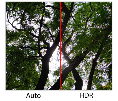 Lg G8s Thinq Auto Vs Hdr
