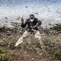 'A Year in Photos': un documental que profundiza sobre las imágenes ganadoras de los Sony World Photography Awards
