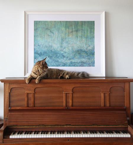 Su inseparable gato