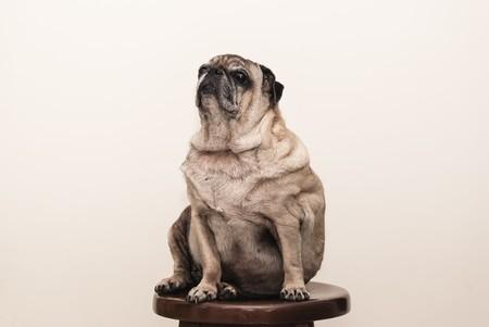 Más años, más kilos: por qué nos cuesta más adelgazar con el paso de los años y cómo podemos solucionarlo