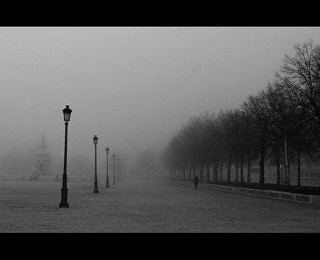 niebla-en-la-mariblanca.jpg