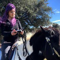Los caballos y Red Dead Redemption 2